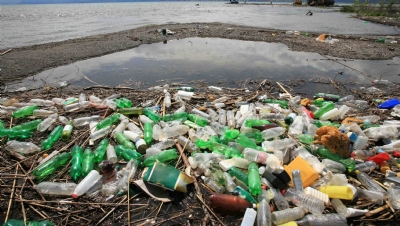 Plastic pollution – what was the tipping point?
