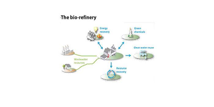 The bio-refinery