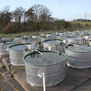 Mesocosm research: Testing the waters