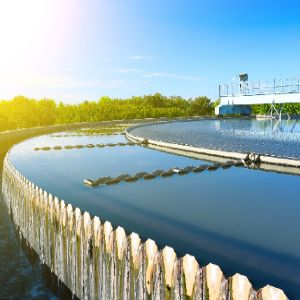 Water leads the way to a green recovery
