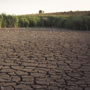 Day Zero: Waking up to water scarcity