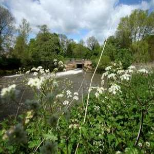 Project Focus: Upstream Thinking on the River Ouse
