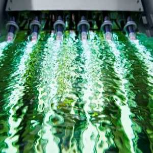 Digging Deeper: UV disinfection