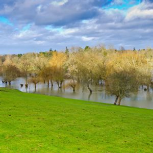 Opinion: The added benefits of natural flood defences