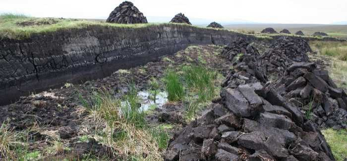South West Water is investing £2.2M to restore 2,000 hectares of peat bog on Exmoor