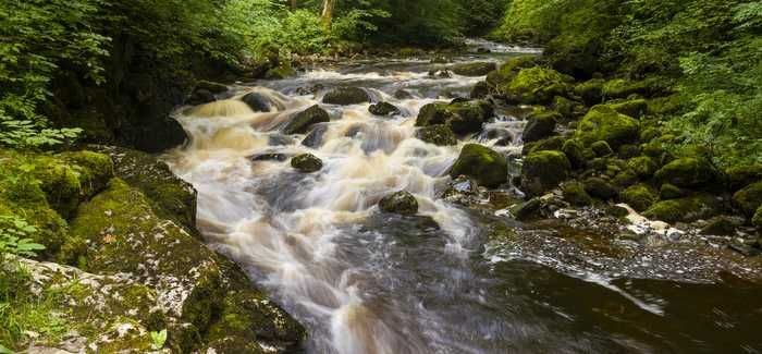 Less water needs to be taken from the environment, says the Northern Ireland Executive