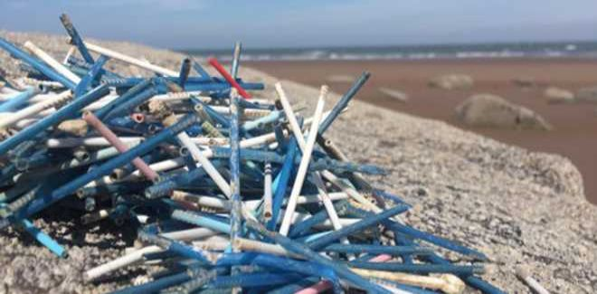 Plastic cotton buds on a beach