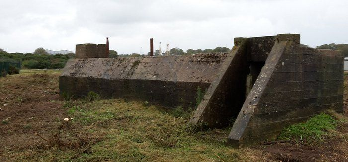 The air raid shelter at Montrose was hidden behind the undergrowth