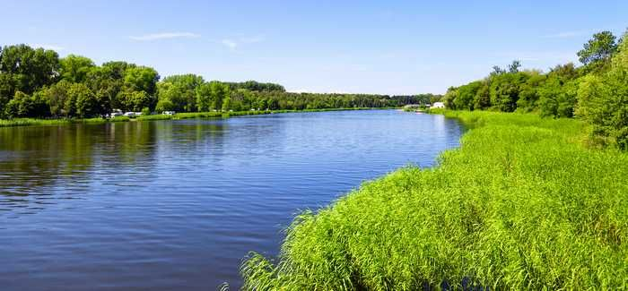 Water companies can do more to reduce pollution to rivers, says EA