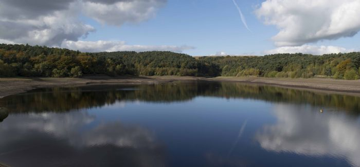 The project began with the planting of more than 14,000 trees at Ogden Water in Halifax