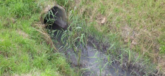 Foul sewage was transferred to a surface water sewer which led to the pollution