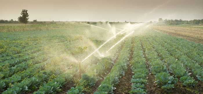 Charging by volume can reduce the amount of water used by farmers