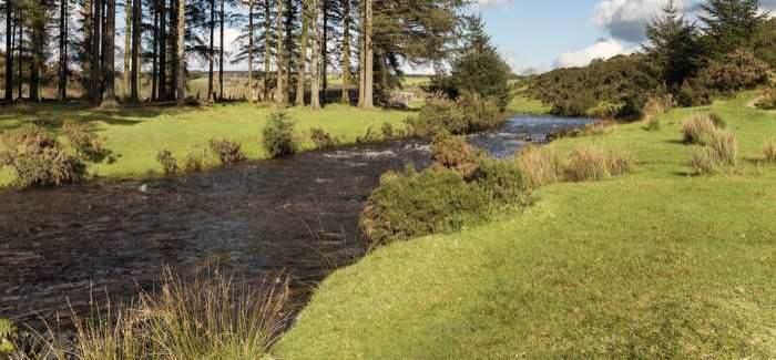 Rivers are in 'better health than at any time since the Industrial Revolution'