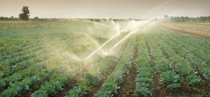 Drier years like 2013 have meant more need to irrigate crops