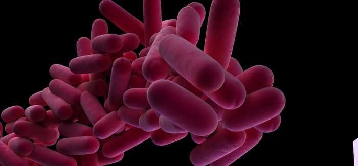 Guidance on controlling Legionella bacteria in water systems has been updated