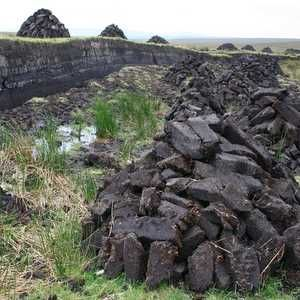 Exmoor peat bogs contain rainfall, says study