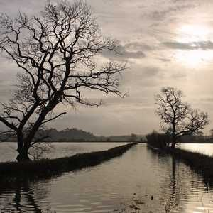 Action plan announced to protect Somerset from flood risk