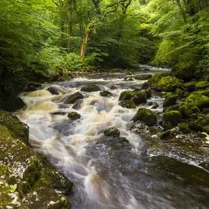 Northern Ireland Executive consults over sustainable water proposals