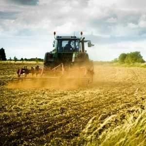 IChemE calls for reduced water use in food and drink production