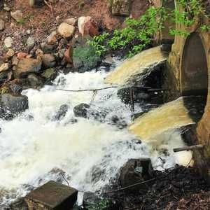 South West Water fined £40K over Devon sewage spill