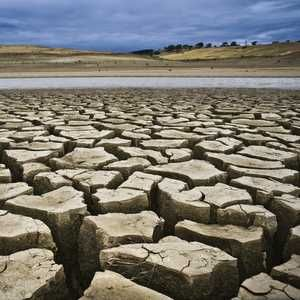 Is the UK prepared for another drought, asks McAlinden