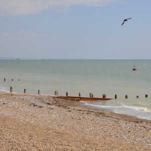Southern Water cleared on two East Worthing pollution charges