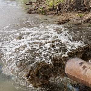Thames Water fined a record-breaking £1M for sewage pollution