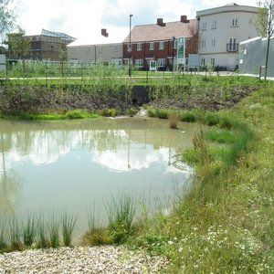 Survey tests 'grass roots' confidence in SuDS delivery