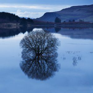 Scottish reservoir regulation transfers to SEPA