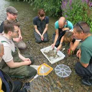 Affinity Water staff work to protect chalk streams