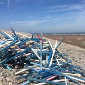 Wessex Water backs cotton bud campaign