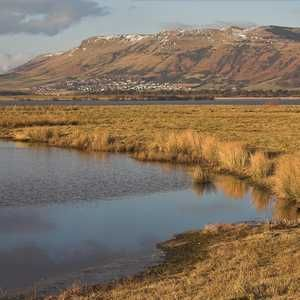 Scotland 'will not relax environmental standards' post-Brexit