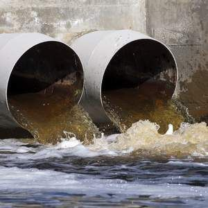 WWF research says 40% of rivers are polluted with sewage