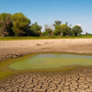 UN urges 'nature-based solutions' to global water shortage