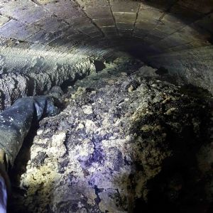 Fatbergs harbour resistant bacteria and parasite eggs - analysis