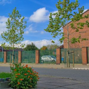 United Utilities helps fund SuDS tree research in Manchester