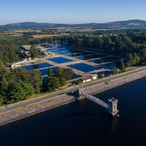 Irish Water awards contract for Vartry WTP upgrade to Veolia