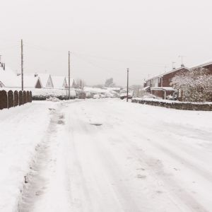 Companies submit improvement plans after Beast from the East