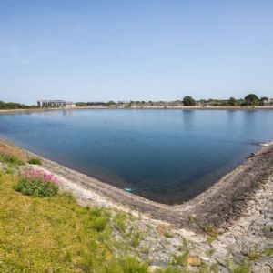 Murphy gets contract for Stillorgan Reservoir upgrade