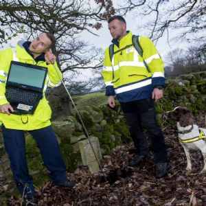 Scottish Water trials use of sniffer dogs to find leaks