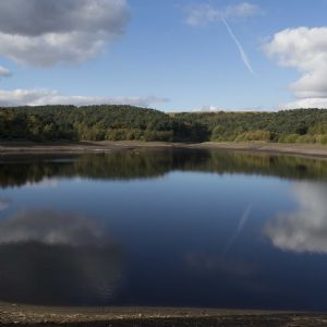 Yorkshire Water begins project to plant a million trees