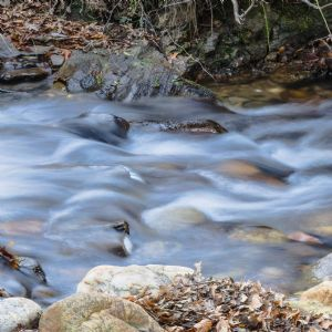 Farmer ordered to pay nearly £4K for stream pollution
