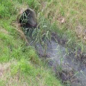 Yorkshire Water pays £200k donation following sewage pollution