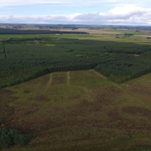 Project to restore peatland in Scotland gets underway