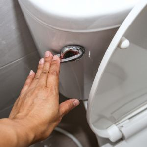 64% feel 'very aware' of what should be flushed - survey