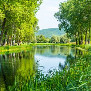 EA launches consultation on future of rivers