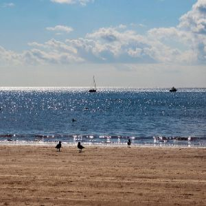 Yorkshire Water launches £1m bathing water project