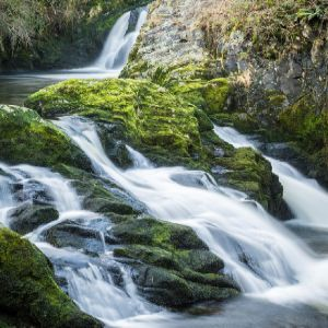 New report sets out Natural Capital Principles for the water industry