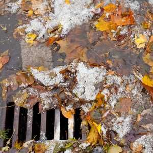 EA inspects Lyme Regis drains to pinpoint pollution