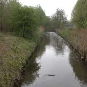 UU issues £80M tender for changes to Royton and Oldham WwTWs